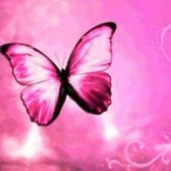 animated-pink-butterfly-picture1-300x225.jpg