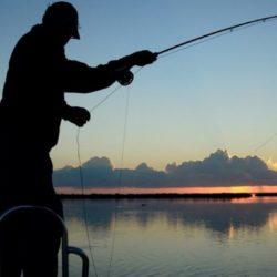 background-pesca-1024x561.jpg